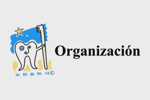 Voluntariado y organización